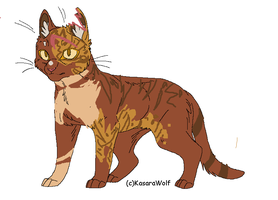 Open warrior cat adoptable by L1lly-flow3rX