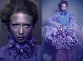 I saw the lilac Queen by DmajicPhotography