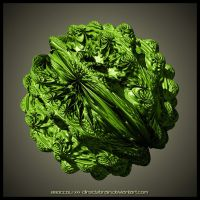 Broccoli by Direct2Brain