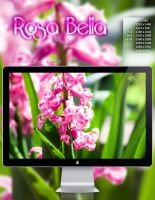 Rosa Bella :Wallpaper Pack: by FatalSedative