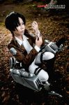 Heichou by Animaidens