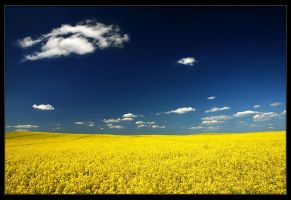 Summer 2007 in Poland by Sesjusz