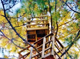 Our Treehouse Built by My Husband {Photo 31} by Empress-XZarrethTKon