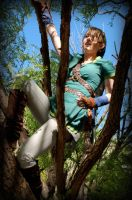 Link is good at climbing trees by AuberyMirkwood