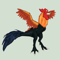Rooster Dragon by CalicoGoldfish