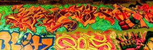 hdr graffiti by Daleyo