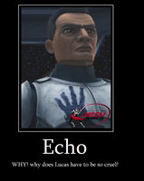 Echo-WHY- by Meerkat-wid-peporoni