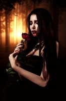 Bloody Rose II by SamBriggs