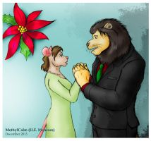 Couple in Christmas by MethylCalm