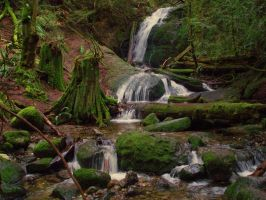 Coal Creek Falls by cjosborn