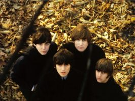 Beatles Autumn by IllTakePoint