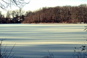 Frozen Pond by WickedOwl514