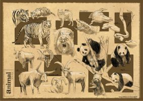 Animal Sketches 2 by anacathie