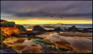Seascape #21 by cokehead666
