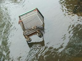Death of Shopping Trolley by MaverickMae