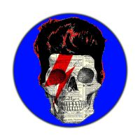 Bowie Skull by Babs9