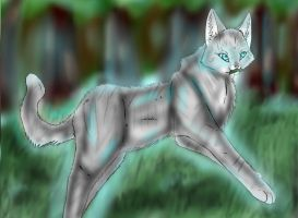 6. Jayfeather by Joker-Darling