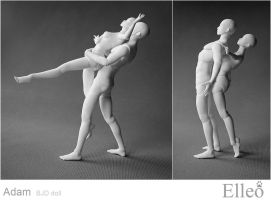 Adam Eve Dance Bjd 06 by leo3dmodels