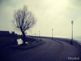 The Lonely Road by InuskiXD
