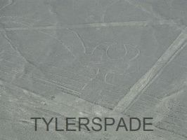 Nazca lines: The... I'm not sure by Tylerspade