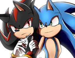 .:Sonic:. Hey Buddy! Always together? by Jan-01