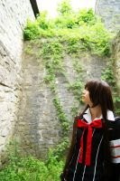 Vampire Knight - Wall by Flutze