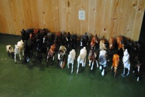 Small Breyer Herd by SexyGreySheWolf