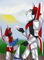 TF - SS Does Not Want by liliy