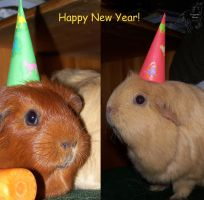 New Year Piggies by Fuego48