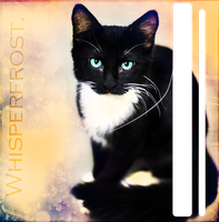 Whisperfrost. by ViperInsidious