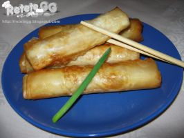 Chicken Spring Rolls by DanutzaP