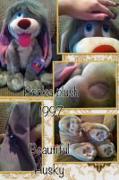 Pooka Plush 1997 by BeautifulHusky