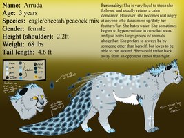 Arruda Reference 2013 by Spottedfire23