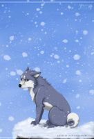 Gin. Miss you, Father by ArtemisA-wolf