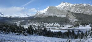 Icefields in Alberta by kwleung