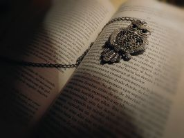 There is an Owl in my book. by cafeinexpression