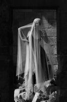 Taking the veil by fb101