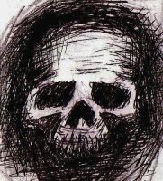 Skull by pagone
