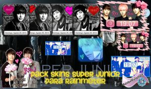 Pack suju skins rainmeter by RainboWxMikA