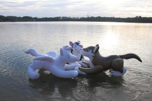 Inflatable animals at the lake by schorse1000