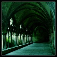 Salisbury Cathederal Cloister by triksy