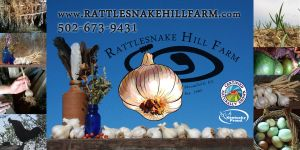 Rattlesnake Hill Banner by TOOLaree