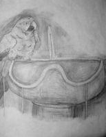 Parrot On Fountain by Aluciel286