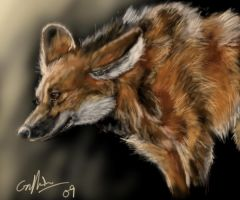 Maned Wolf by SilverFlight