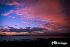 Hawaiian Colors by Milton-Andrews