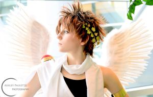 Pit Cosplay (Kid Icarus) by ashleypaulette