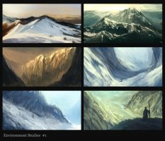 environment studies 1 by hyamei