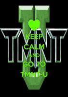 Keep Calm and Go To TMNT-U by ImagenationMaster