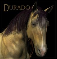 Durado for Lytewings by WhiskerWing