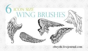 6 Wing Brushes by Obeyshi